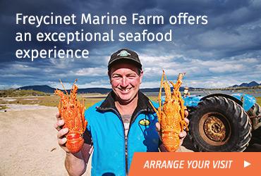 freycinet-marine-farm_2016-03-18