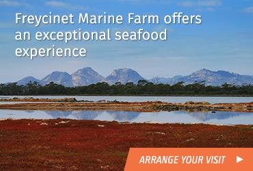 freycinet-marine-farm_2016-06