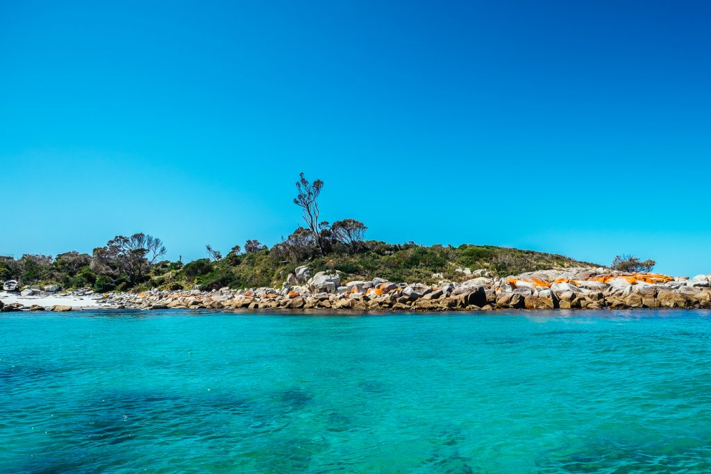 Exploring Bay of Fires from the water with Bay of Fires Eco Tours, by @sideprjct